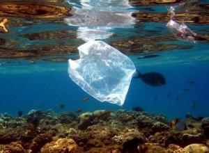 Plástico oxibiodegradável